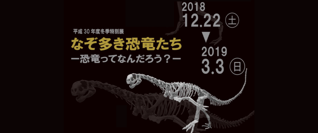 なぞ多き恐竜たち_特別展