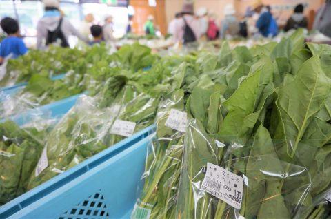 新鮮な丹波産 有機野菜