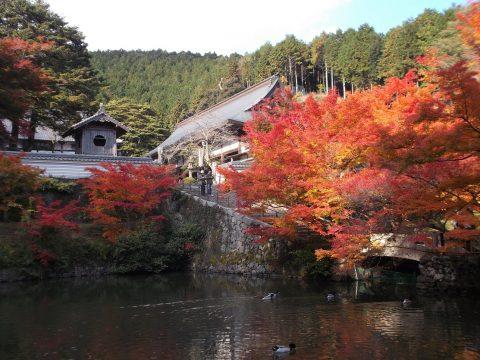 永谷山 円通寺