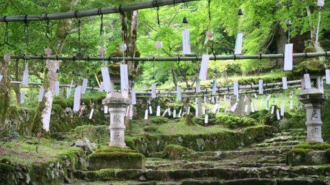 高源寺 風鈴祭り